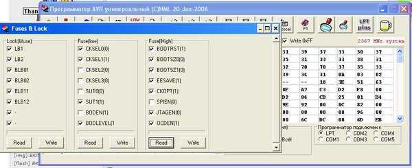 file_007.jpg